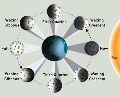 Phases of the moon, full moon, new moon