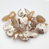 Snake Skin Jasper Tumble Stones 2-3cm