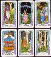 Tarot of a Moon Garden, Tarot cards