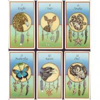 Medicine Cards Set