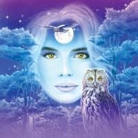 Moon-Music Gift Card