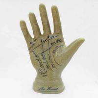 Phrenology, Palmistry Hand Ornament