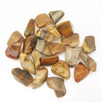 Petrified Wood Tumble Stones 2-2.5cm