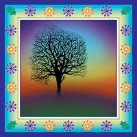 Dawn Tree Shamana Card