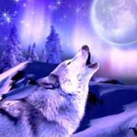 Howling Wolf Greeting Card with Music CD