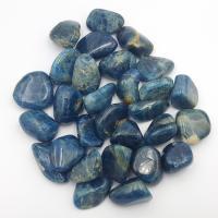 Blue Apatite Tumble Stones 2-2.5cm