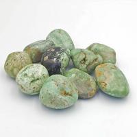Variscite Tumble Stone 2.5cm B2