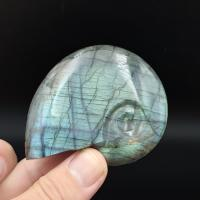 Labradorite Ammonite No1