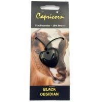 Capricorn Birth Stone Heart Pendant with Cord