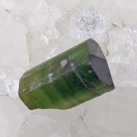 Green Tourmaline Crystal No X11