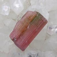 Bi Colour Tourmaline Crystal No X21