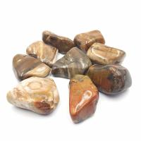 Jumbo Petrified Wood Tumble stones 4-5cm