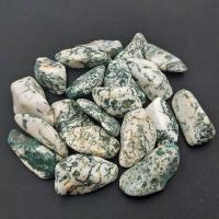 Extra Large Green Tree Agate tumble stones