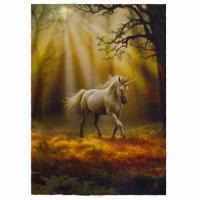 Glimpse of a Unicorn Card by Anne Stokes