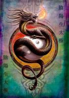 Yin Yang Protector Greetings Card