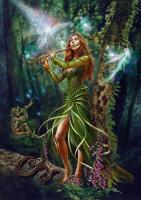 The Faery Reel Card