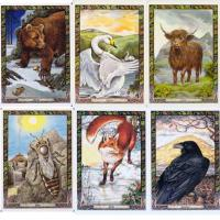 Druid Animal Oracle card deck