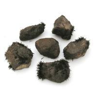 Small Lodestone - Natural 1-1.5cm