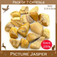 Pack of 7 Picture Jasper Tumble Stones