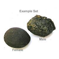 Boji Stone Pop Rock Stones