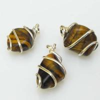 Tiger Eye Tumble Stone Coil Pendants
