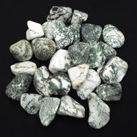 Green Tree Agate tumble stones