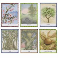 The Wisdom of the Trees Oracle Cards by Jane Struthers